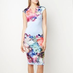 Ted Baker Brynee Floral Sheath Cap Sleeve Dress